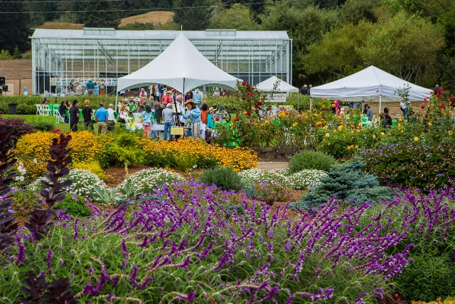 Attractive Stroll Through The Garden, Enjoy Local Food, Local Wine And Beer, Music, 13  Local Plein Air Artists And Silent Auction.